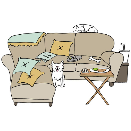disorganized: An image of living room pets.