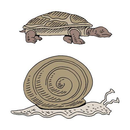 An image of a turtle and snail race. Ilustração