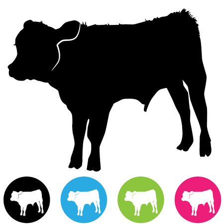 An image of a calf silhouette. Vector