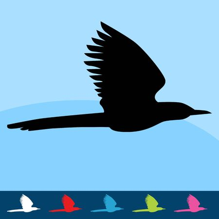 An image of a  flying bird.