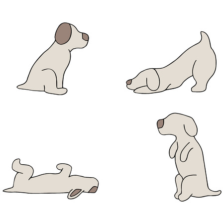 An image of dog tricks. Vector