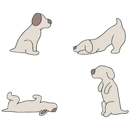 dead dog: An image of dog tricks. Illustration