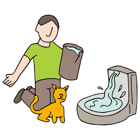 man drinking water: a cat drinking water from fountain.