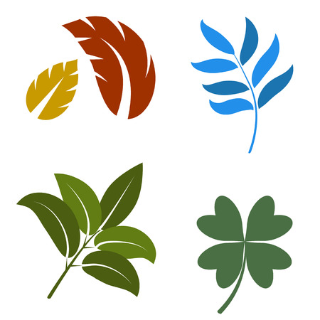 four leafed: An image of a set of leaves  Illustration