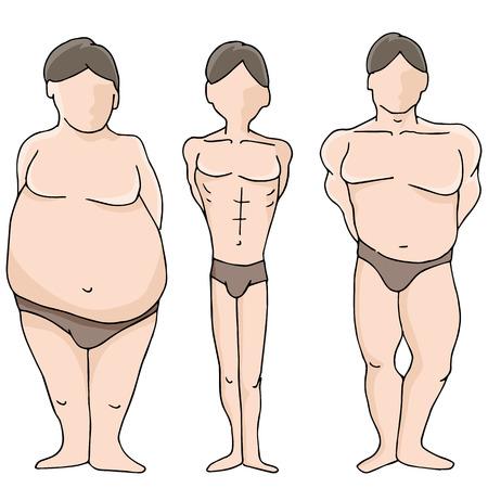 男性の体図形のイメージ。  イラスト・ベクター素材