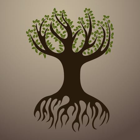 rooted: An image of a rooted tree.