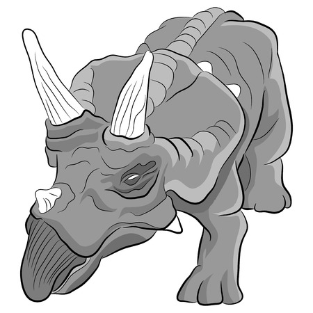 triceratops: An image of a Triceratops dinosaur. Illustration