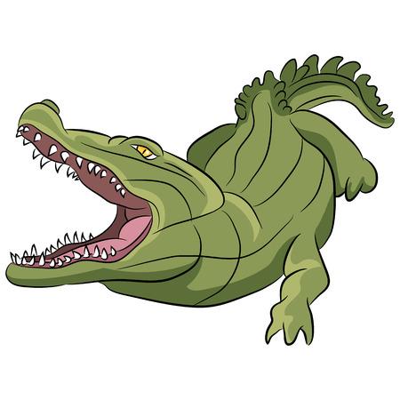 An image of an alligator. Vector