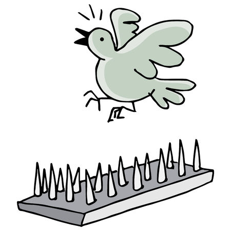 An image of pigeon spikes.