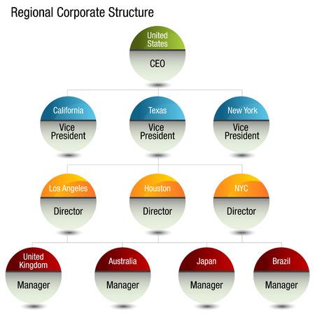 organizational chart: An image of a regional org chart.