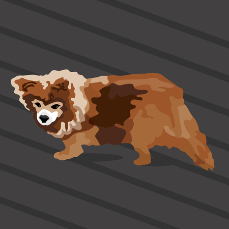 An image of a small brown dog. Ilustracja