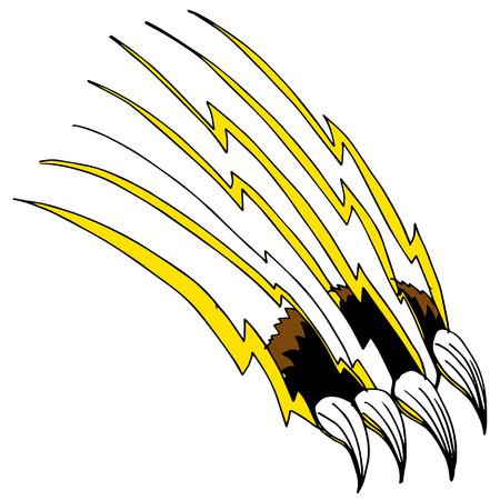 An image of a shredding claw.