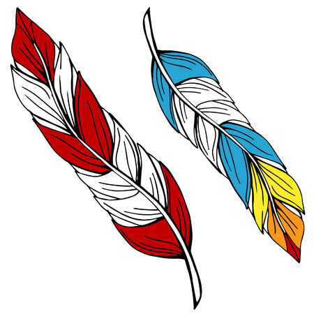 An image of two colorful feathers. Ilustrace
