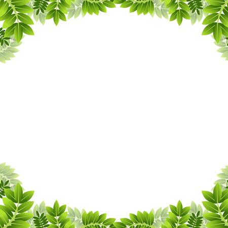leaf border: An image of a leaf border.