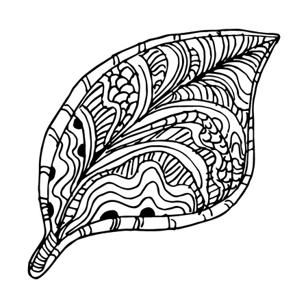 black and white leaf: An image of a tree leaf - zentangle style.
