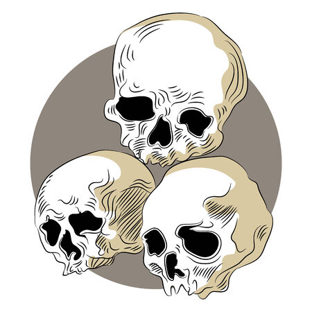 decomposed: An image of decomposed human skulls.
