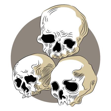 decomposed: Una imagen de cr�neos humanos descompuestos.