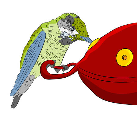 An image of a hummingbird sitting at a feeding station. Ilustrace