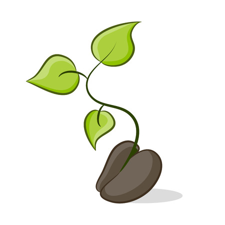 An image of a seed that is growing plant life. Illustration
