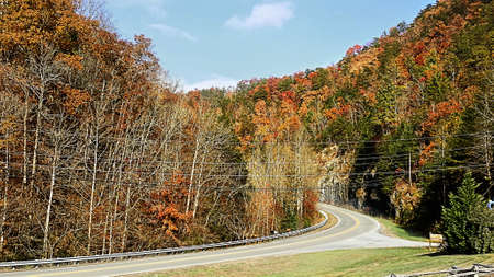 curving lines: An image of the Smoky Mountain highway.