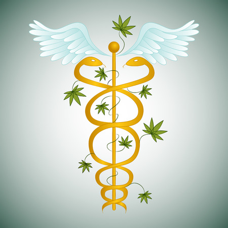 An image of a medical marijuana caduceus. Vector