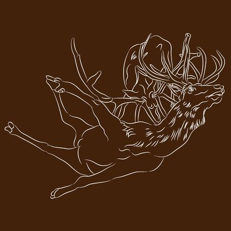 An image of fighting elks.