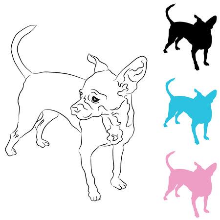 chihuahua dog: An image of a chihuahua icon set.