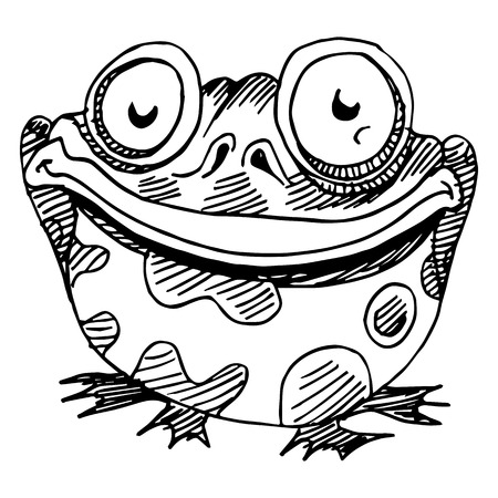 amphibians: An image of a fat frog.