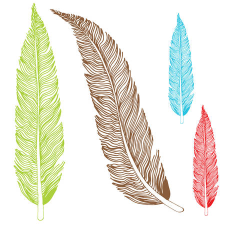 An image of a set of feather drawings. Ilustrace