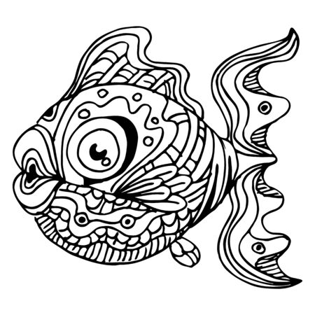 black fish: An image of a  fish. Illustration
