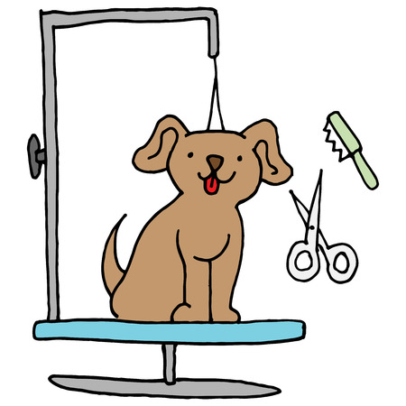 dog grooming: An image of a Dog grooming table.