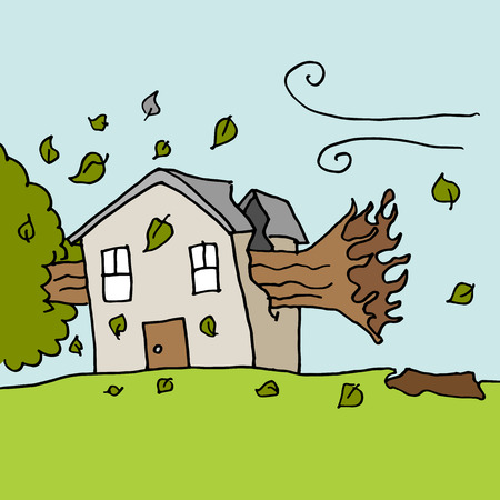 windstorm: An image of a trees falling on house on a windy day.