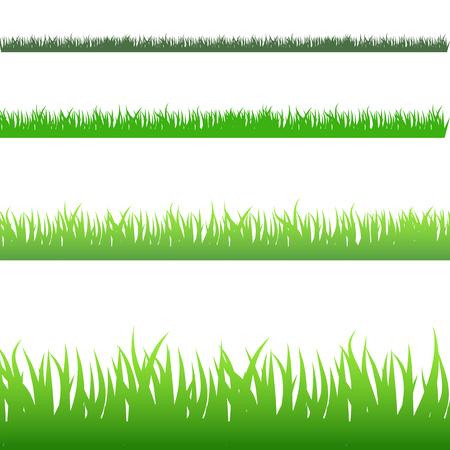 Een beeld van een reeks groene die grasbladen op wit wordt geïsoleerd.
