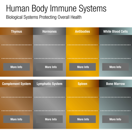 Image of a metallic bronze gold silver Human Body Immune Systems Chart.