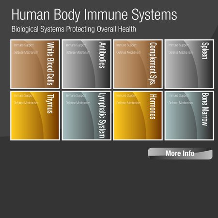 An image of a metallic bronze gold silver human body immune systems chart. Foto de archivo - 96754004