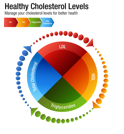 An image of a Total Blood Cholesterol HDL LDL Triglycerides Chart. Stock fotó - 96976565