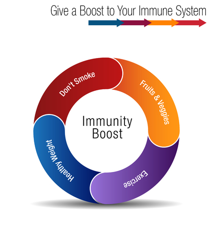 Boost and strengthen your immune system chart concept illustration. 向量圖像