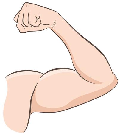 Une image d'un bras masculin musclé fléchissant le dessin du biceps.