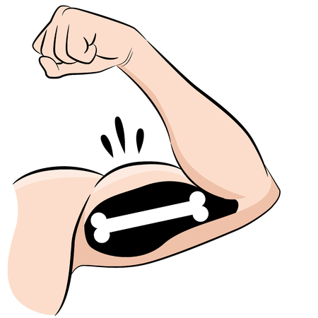 An image of a Strong Muscles Bones Male Arm Flexing Bicep drawing.