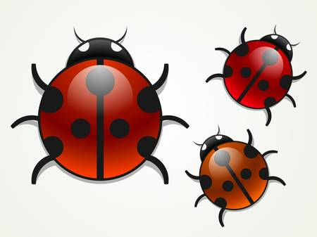 multicolored ladybugs Vector