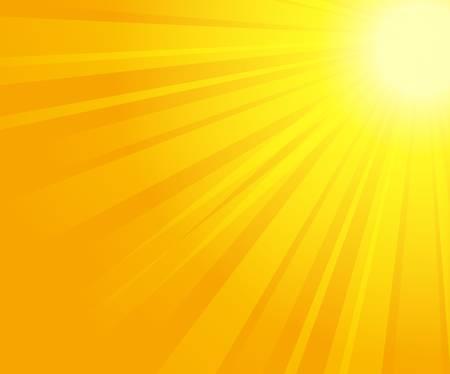 vector illustration of sunburst