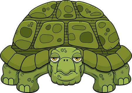 relajado: Una historieta de la tortuga verde de pie y mirando.
