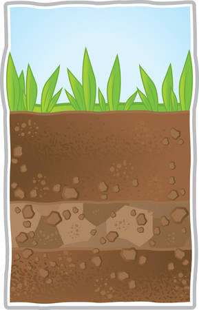 An illustration of a cross section of underground.