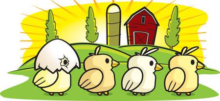 Eine Gruppe von Comic-Baby-Küken auf einem Bauernhof zu Fuß. Standard-Bild - 41846100