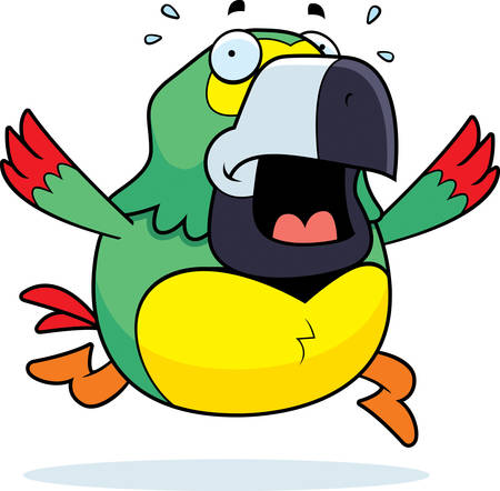animal screaming: A cartoon parrot running in a panic. Illustration