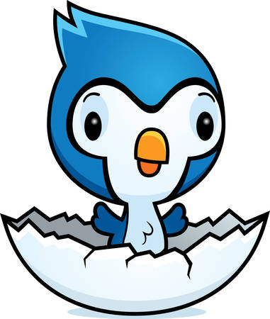 baby blue: A cartoon illustration of a baby bluejay hatching from an egg.