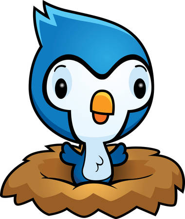 bluejay: A cartoon illustration of a baby bluejay in a nest.