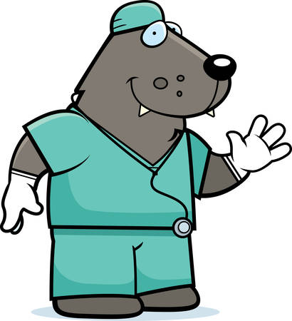 scrubs: A cartoon illustration of an wolf doctor in scrubs. Illustration
