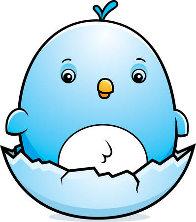 bluebird: A cartoon illustration of a baby bluebird hatching from an egg. Illustration
