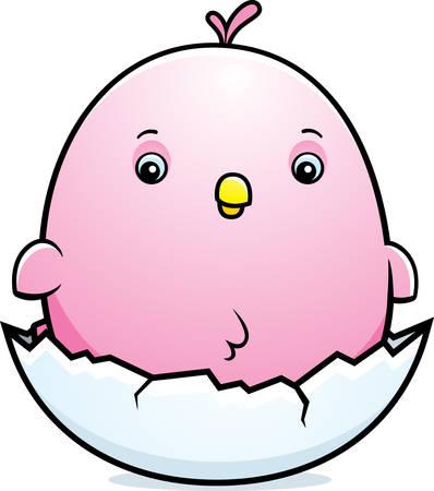 parakeet: A cartoon illustration of a baby pink parakeet hatching from an egg.